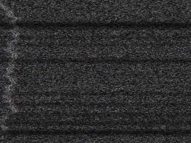 German sm porn